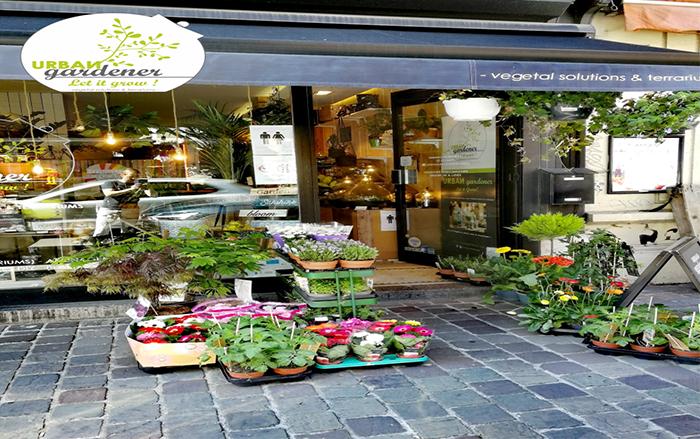 URBAN GARDENER | Let it Grow! – Plantes, fleurs et semences – Ixelles