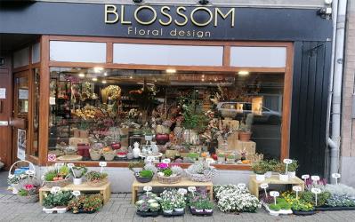 Blossom Floral – Fleuriste – 4830 Limbourg
